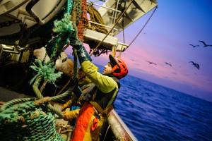"""02 décembre 2013 : Mise à l'eau des filets lors d'une campagne de pêche dans la Manche, à bord du chalutier """"Le Sainte Marie de la Mer"""" au large des côtes Normandes en Seine-Maritime, Etretat (76), France.                   December 2, 2013: Fisherman aboard the trawler """"Le Sainte Marie de la Mer"""". English Channel,  offshore Normandy, Seine-Maritime, Etretat (76), France."""